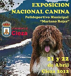Exposición Canina Nacional de Murcia 2012, reconocimiento de raza, cómo llegar, horarios...