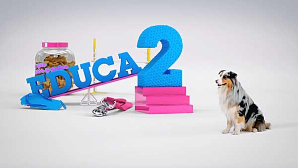 Nueva temporada del programa Mas que perros y gatos, en La 2, con nuevas secciones, deporte con perros, derecho animal y las habituales de educación en positivo, veterinaria...