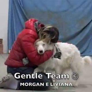 Habilidades caninas con un aussie ciego y sordo, tacto y olfato son las claves (vídeo).