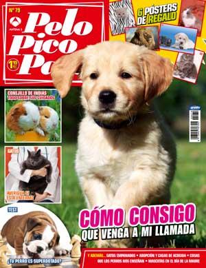 En la revista Pelo Pico Pata de mayo: acudir a la llamada, acupuntura veterinaria, adopciones en la Asociación Protectora de Animales y Plantas La Camada.