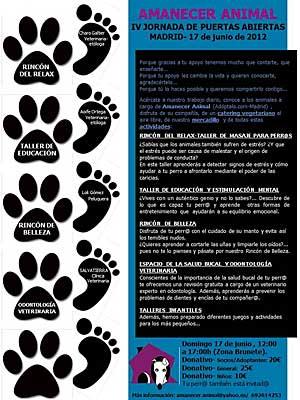 IV Jornada de puertas abiertas en Amanecer animal, con todo tipo de actividades a favor de los perros abandonados.