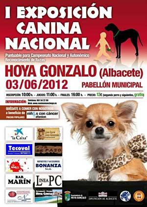 Exposición Nacinal Canina  Benéfica en Hoya Gonzalo (Albacete), para recaudar fondos para AFANION, familias de niños con cáncer.