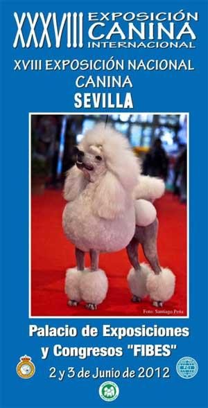 XXXVI Exposición Canina Internacional de Sevilla