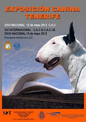 XVI Exposición Internacional Canina de Tenerife. También especiales de dobermann, boxer y dogo canario.