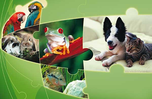 Interzoo 2012, Feria Internacional del Animal de Compañía (Profesionales).