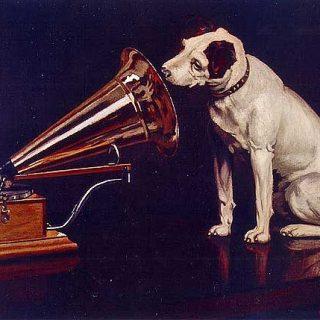 RadioCan, una radio para perros... si, sonidos para perros, creada por AdiesVal.