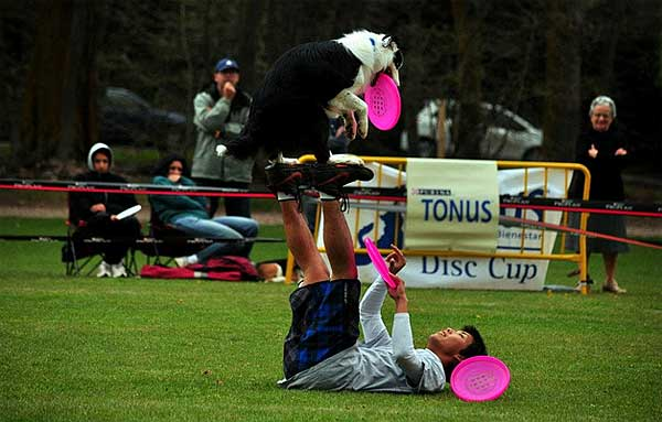 El pasado 28 de abril se celebró en Llívia (Girona) la primera Purina Disc Cup USDDN Qualifier celebrada en España. Esta prueba fue clasificatoria para las USDDN World Finals 2012 en categorías Super Open y Super Pro. Por David Román.