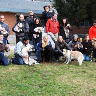Educación y Adiestramiento Canino, Universidad Complutense de Madrid. Diploma de Educación y Adiestramiento Canino. Terapeutas del comportamiento.