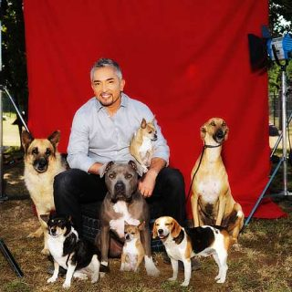 """César Millán ha anunciado el fin de El Encantador de Perros, pero... hay """"segunda parte""""."""