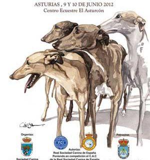 Exposición canina de Asturias 2012, horarios, cómo llegar... También VIII Monográfica de Asturias de Bulldog Inglés, y Concurso Monográfico de Bulldog Francés.