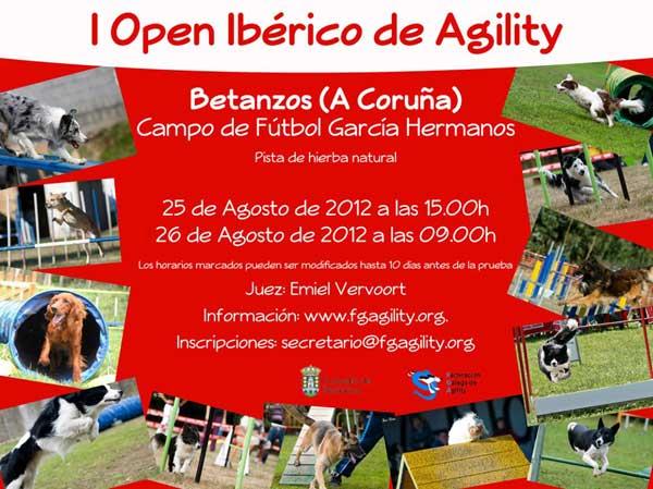 Open Ibérico de Agility, en la Coruña.