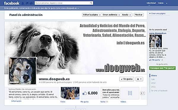 Doogweb en Facebook.