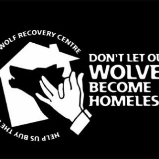 """""""No dejes a nuestros lobos sin casa"""", campaña de Grupo Lobo (vídeo)."""