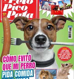 Revista Pelo Pico Pata, septiembre 2012: Shetland, educación, adopciones...