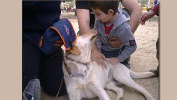 """""""El primer beso"""", un enternecedor relato de Alicia García Giraldez sobre la amistad entre un niño y un perro de servicio."""