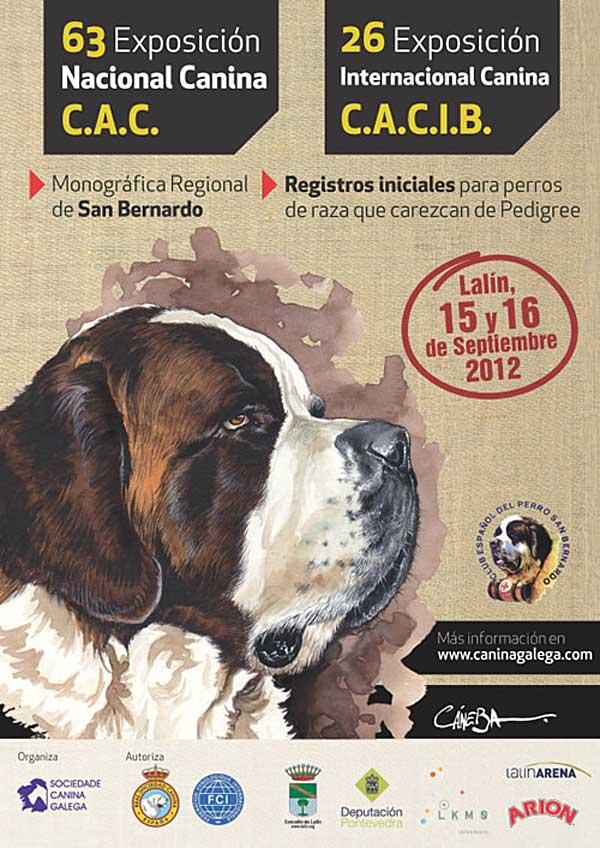 Exposición Canina de Pontevedra (Lalín), monográfica de San Bernardo, registro de razas, pruebas de identificación genética...