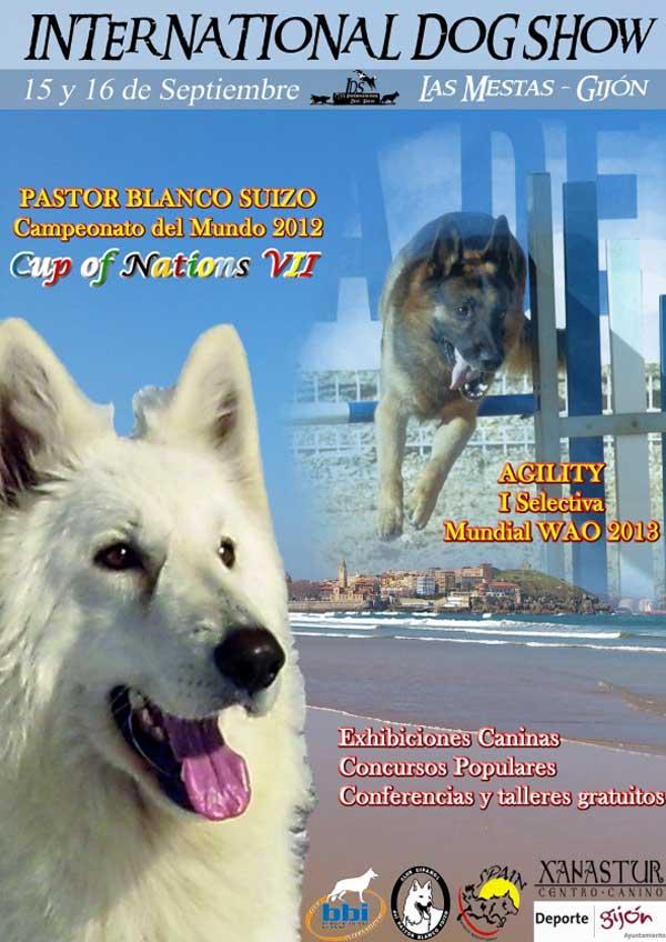 International Dog Show en Gijón, Selectiva de Agility WAO, Mundial de belleza pastor blanco suizo, talleres caninos gratuitos...