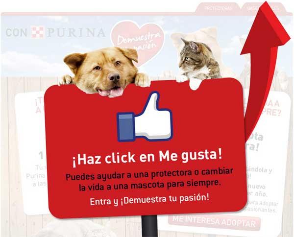 """""""Demuestra tu pasión"""", acción de Nestlé Purina para apoyar las protectoras y promover la adopción."""