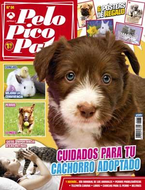 """Revista Pelo Pico Pata, octubre de 2012: Cómo acariciar al perro, el cachorro recién adoptado, en comportamiento canino el caso de """"Toby un perro problemático"""", la importancia del paseo..."""