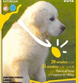 XXVI Exposición Canina Nacional/Internacional de Málaga, horarios, cómo llegar, especiales y mongráficas, reconocimiento de raza...