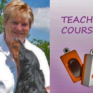 Curso para adiestradores y profesores de adiestramiento con Kay Laurence, en Madrid.