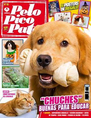 """Pelo Pico Pata noviembre 2012: Naoto Matsumura el guardián de los perros de Fukushima, """"Diario de un educador canino"""", golosinas para educar, Chaser el perro de las 1.000 palabras, la mafia de los perros de diseño..."""
