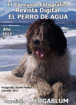 """Nuevo número de la revista digital gratuita """"El Perro de Agua""""."""