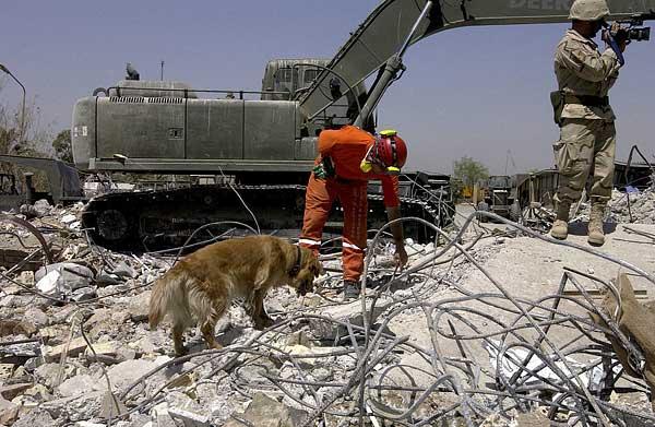 El vínculo de los guías con los perros de rescate, más allá del trabajo.