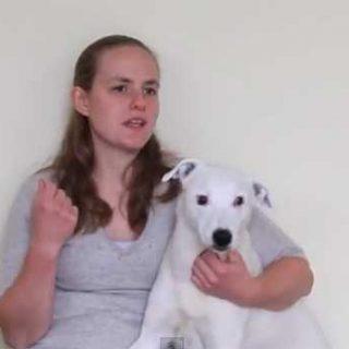 Rosie Gibbs ha adiestrado a un pitbull sordo mediante un lenguaje de signos ideado para comunicarse con niños con problemas (vídeo).