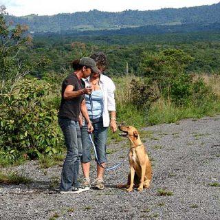 """¿Superarías con tu/s perro/s las ocho pruebas de """"Buen Ciudadano Canino""""? (Con vídeo)."""