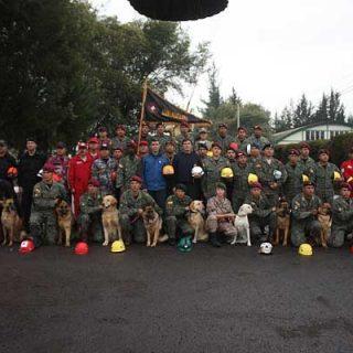 La importancia de la motivación, rigurosidad y disciplina en el Rescate Canino.