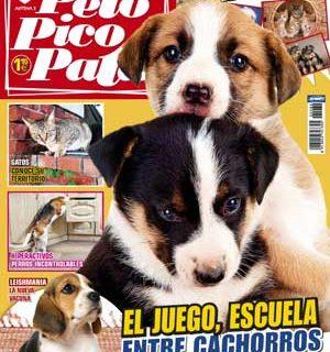 """Revista Pelo Pico Pata, diciembre 2012: """"El juego como escuela de cachorros"""", """"Amistades imposibles"""" (relación inter-especies), como raza principal el Rhodesian ridgeback, perros detectores de obras de arte, """"Perros desinquietos""""..."""