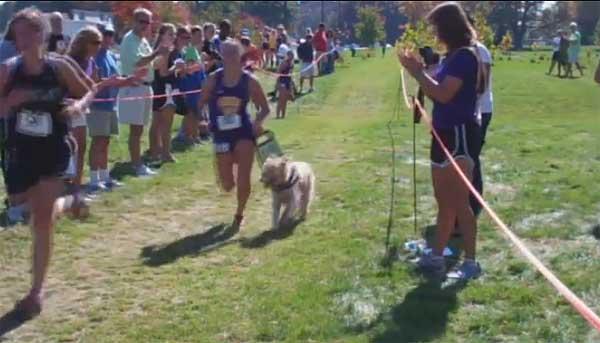 Chloe es el perro guía de Sami Stoner, una historia de superación personal (vídeo).