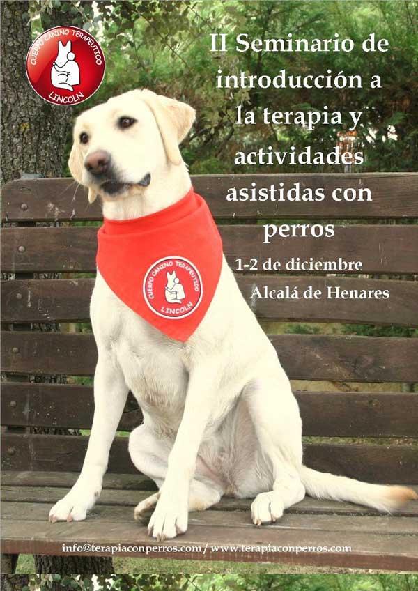 Ii Seminario De De Introducci 243 N A Las Iaa Con Perros Www