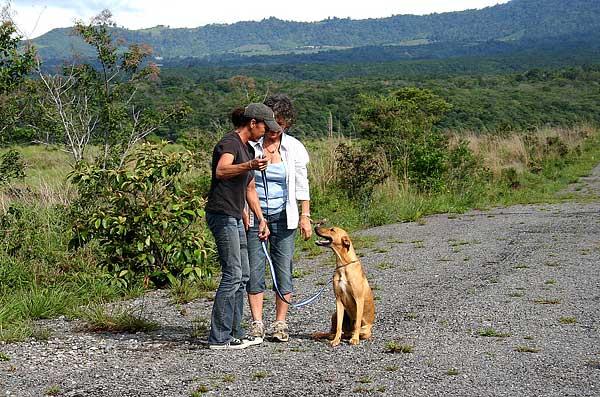 """Las tres """"D´s"""" del contracondicionamiento, un recurso imprescindible en la modificación de conductas en perros."""