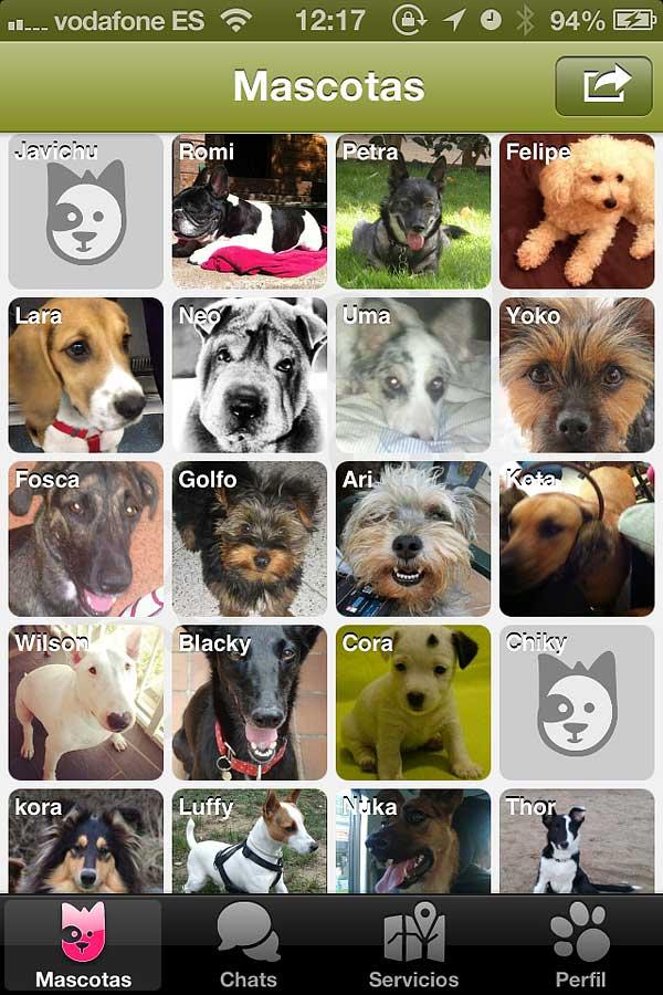 Doggy Talky, nuevo buscador de amigos perrunos y servicios caninos para smartphones.
