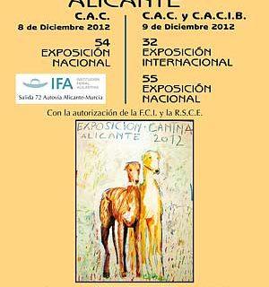 Expo Canina de Alicante 2012, cómo llegar, horarios... También demostraciones de la Unidad Canina de la Policía Local de Alicante y Exhibición Perros de Intervención y Detección.