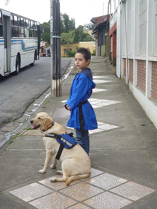 La asociación española AIAP entrega la primera perra de asistencia en Costa Rica.