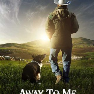 Away to me, documental de pastoreo con perros (incluye vídeo).
