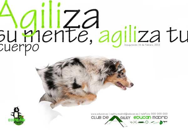 El Club de Agility EDUCAN Madrid se inaugurará el próximo 16 de febrero. Si deseas asistir a la fiesta de inauguración, sólo es necesario reservar plaza antes del 11 de febrero.