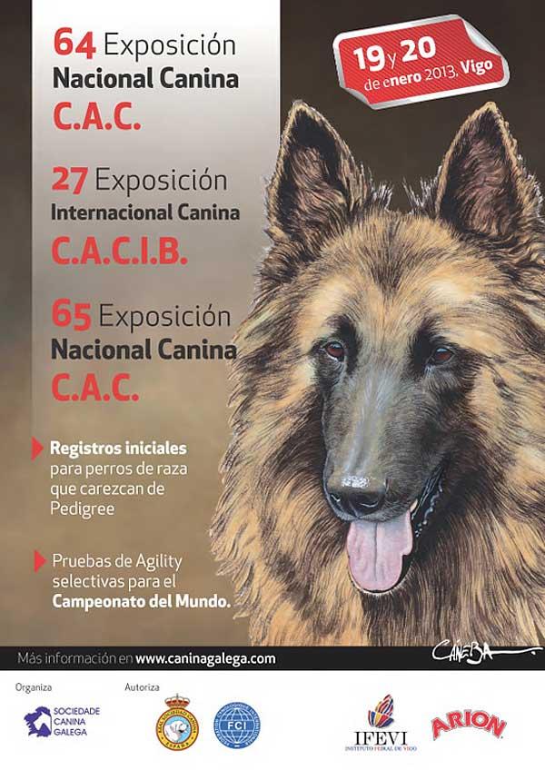 Exposición Internacional y Nacional Canina Vigo 2013, programa completo de actividades, horarios por razas, cómo llegar...