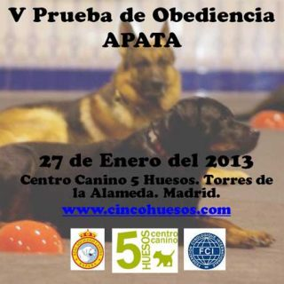 V Prueba de Obediencia -OCI APATA, en las instalaciones del Centro Canino Cinco Huesos.