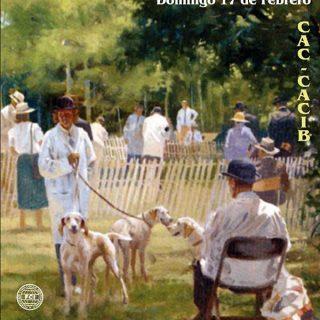 Exposición Canina Granada 2013, Monográfica B del Club Español de Retrievers, IX Monográfica Regional de Andalucía de Dogo Alemán y Concurso Monográfico de Alano Español.