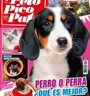 """Revista Pelo Pico Pata, febrero 2013: ¿Es mejor elegir perro o perra?, Perros ladradores, Cómo elegir educador canino, La inteligencia del perro, Cómo hacer que acuda a la llamada, Mantrailing un """"nuevo"""" deporte canino..."""
