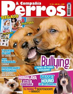 """Revista Perros y Compañía, marzo de 2013: Raza principal el basset hound, perros acosadores, influir en el carácter del cachorro, cómo evitar la ansiedad en los perros, Balto y Togo los héroes de la Iditarod, en """"perros de película"""" Hachiko..."""