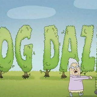 Dog dazed. ¿Qué se puede hacer con 30.000 toneladas de caca de perro al día?