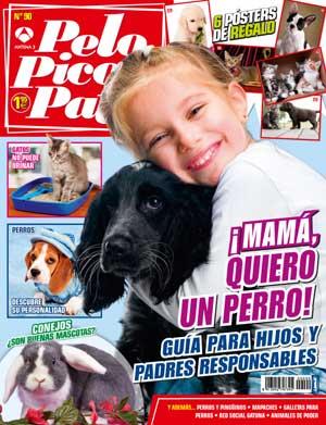 Revista Pelo Pico Pata, abril 2013: Faith, perro de terapia para veteranos de guerra, Perros cuidadores de pingüinos, La memoria de los perros, ¡Mamá, quiero un perro!, Los sentidos de los perros, Perros reactivos.