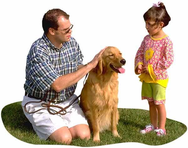 Estudio demuestra los beneficios de los perros en los hogares con niños autistas. #perro #autismo.