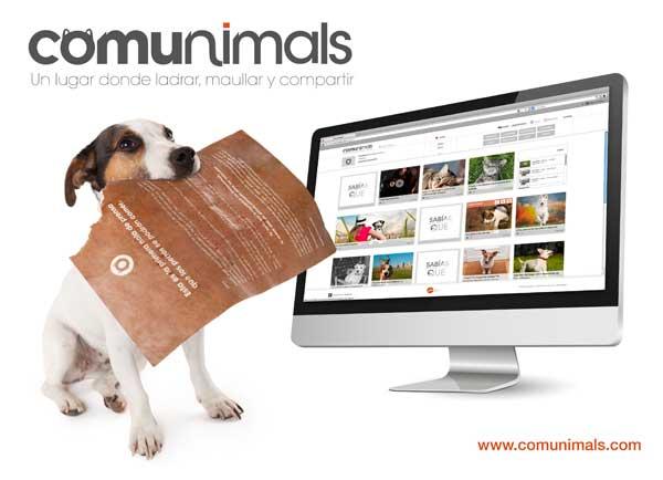 Affinity crea Comunimals, la primera comunidad online pensada para perros y gatos.