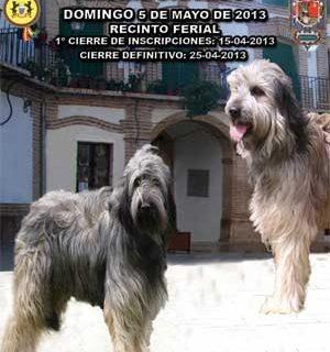 #Perros. Exposición Canina Nacional Razas Españolas Archidona 2013, horarios, razas...